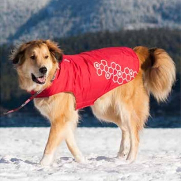 Venture Outerwear Dog Coat - Crimson