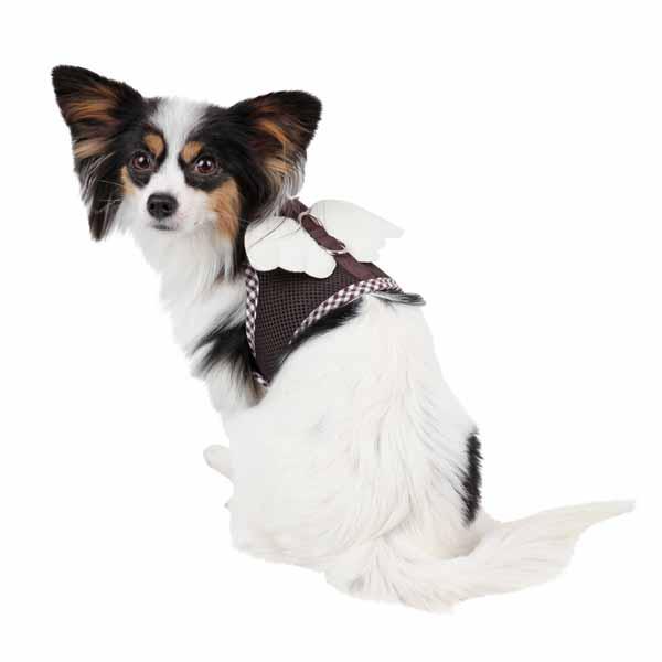 Venus Pinka Dog Harness by Pinkaholic - Brown