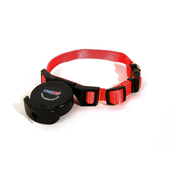 WalkieWay All in One Dog Leash-Collar - Regal Red