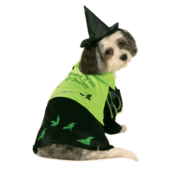 Wicked Witch of the West Dog Costume