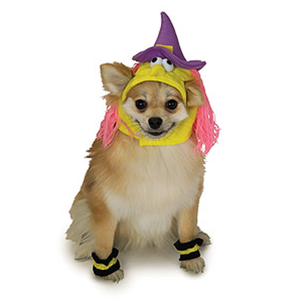 Witch Dog Halloween Costume Hat
