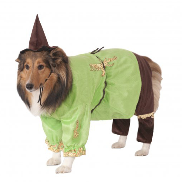 Wizard of Oz's Scarecrow Dog Halloween Costume