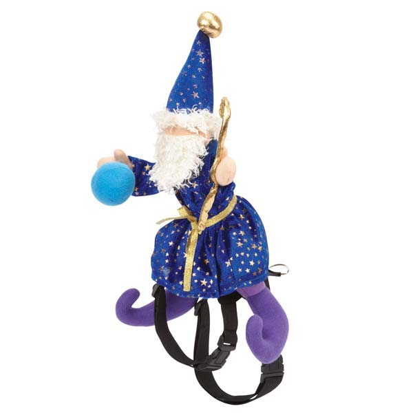 Wizard Saddle Halloween Dog Costume