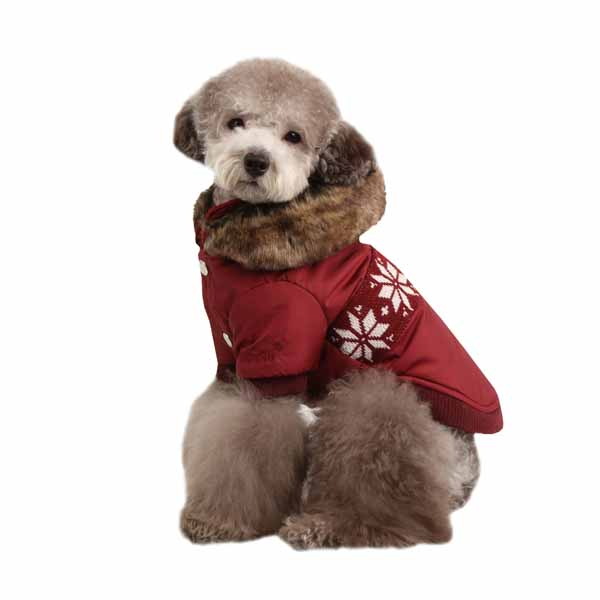 Wonderland Dog Coat by Puppia - Wine