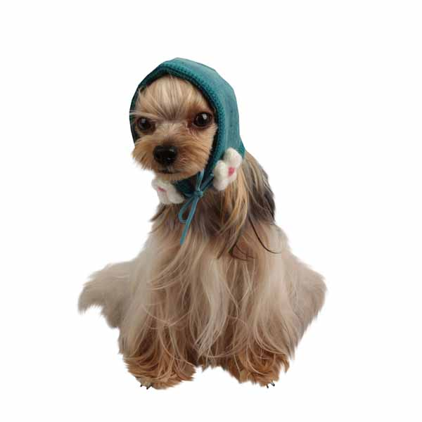 Yuppie Dog Hat by Puppia - Aqua