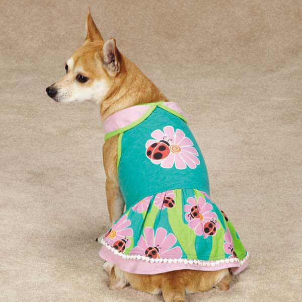 Zack & Zoey Flutter Bugs Dog Dress - Lady Bug