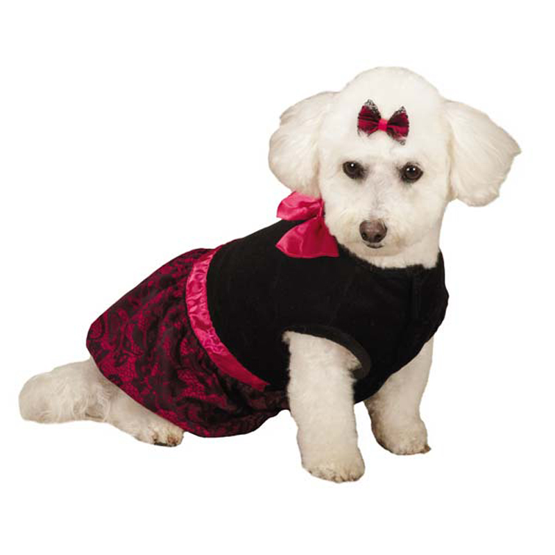 Zack and Zoey Heritage Collection Lace Print Dog Dress