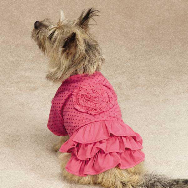 Zack & Zoey Polka Dot Ruffle Dog Dress - Raspberry