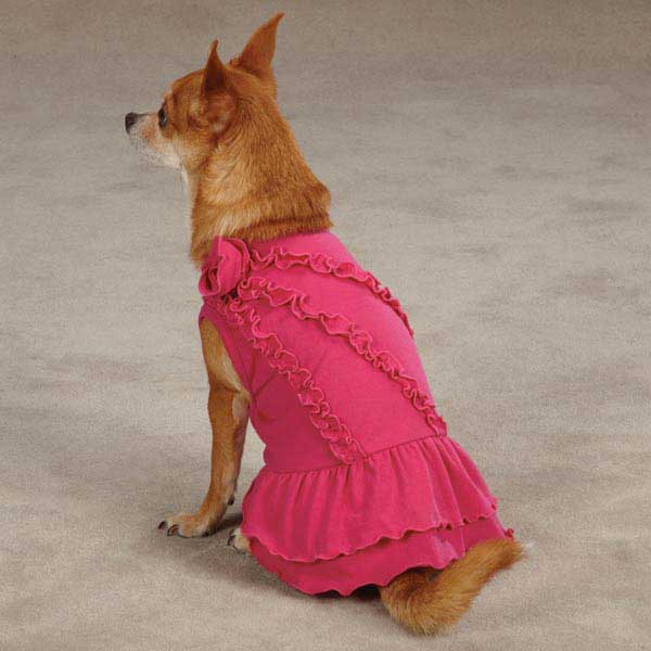Zack & Zoey Rosette Ruffle Dog Dress - Raspberry