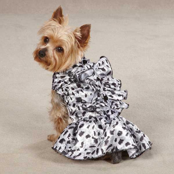 Zack & Zoey Snow Leopard Satin Dog Dress