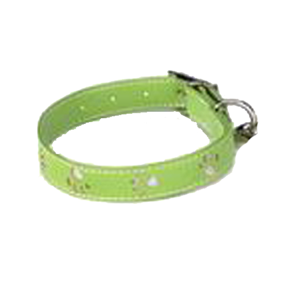 Zack & Zoey Sparkle Paw Dog Collar - Parrot Green