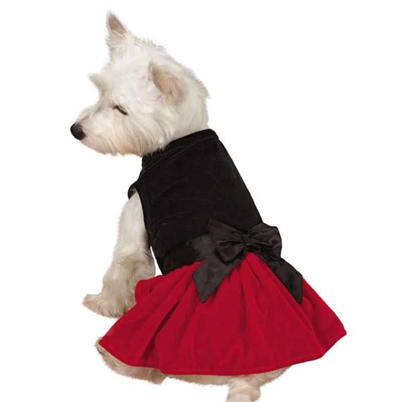 Velvet Bow Dog Dress