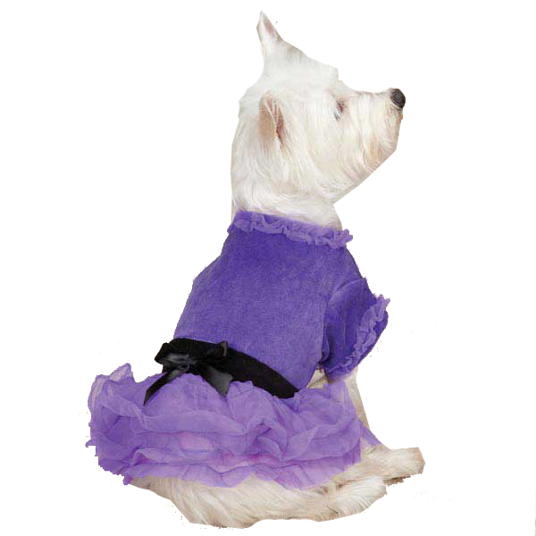 Vibrant Party Dog Dress - Ultra Violet