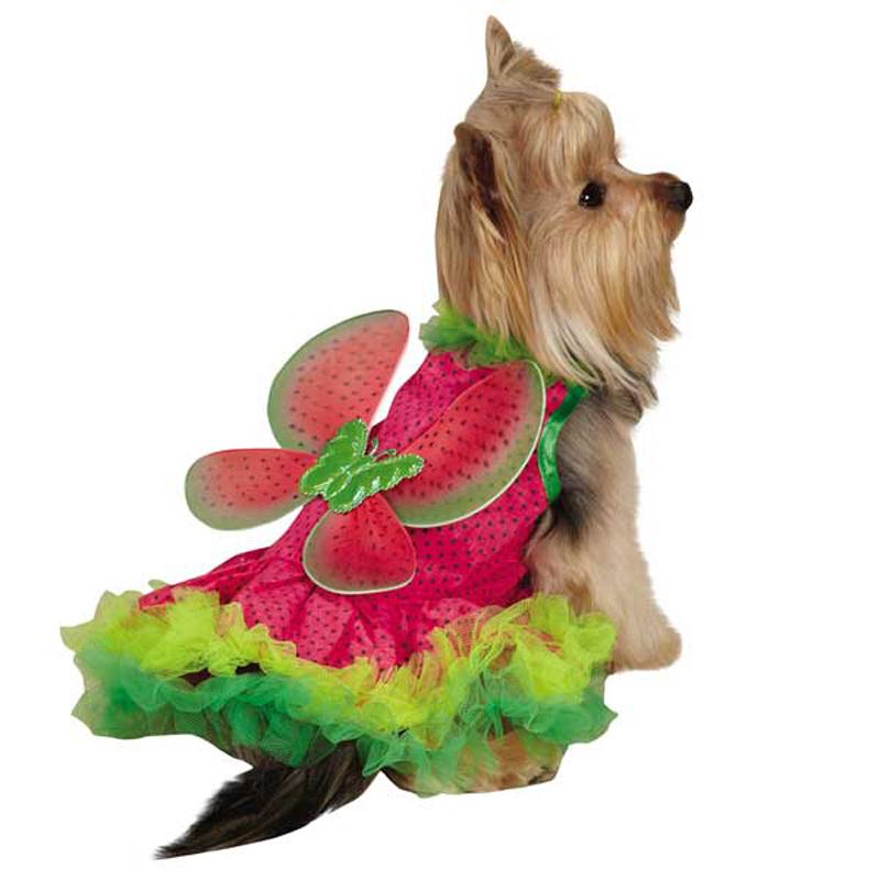 Watermelon Fairy Dog Costume
