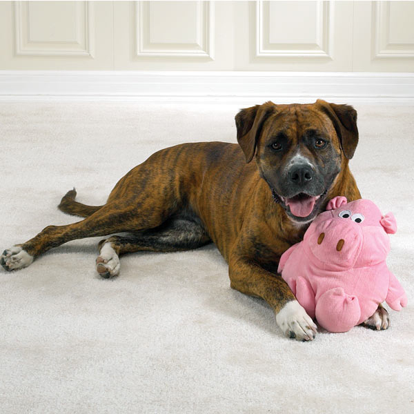 Zanies Barnyard Grunter Toy for Large Dogs - Pig