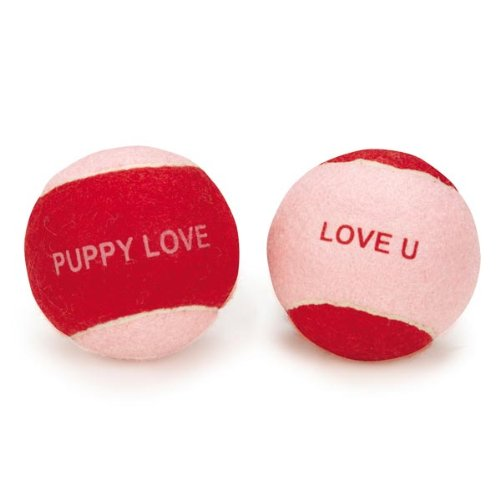Zanies Catch Some Love Tennis Ball Dog Toy