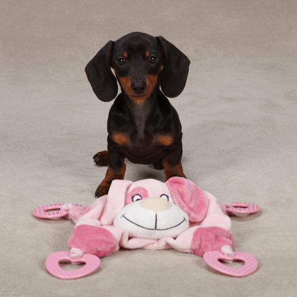 Zanies Puppy Snuggler Toy - Pink