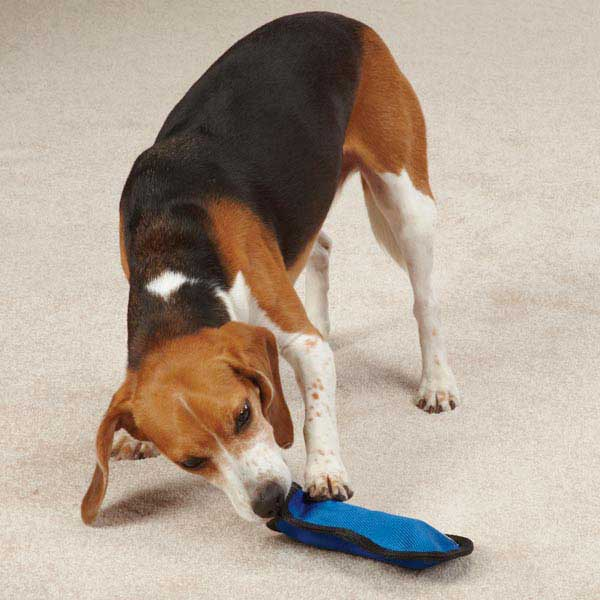 Zanies Rawhiders Dog Toy - Blue
