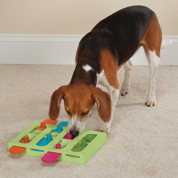 Zanies Treat Hunter Interactive Dog Puzzle
