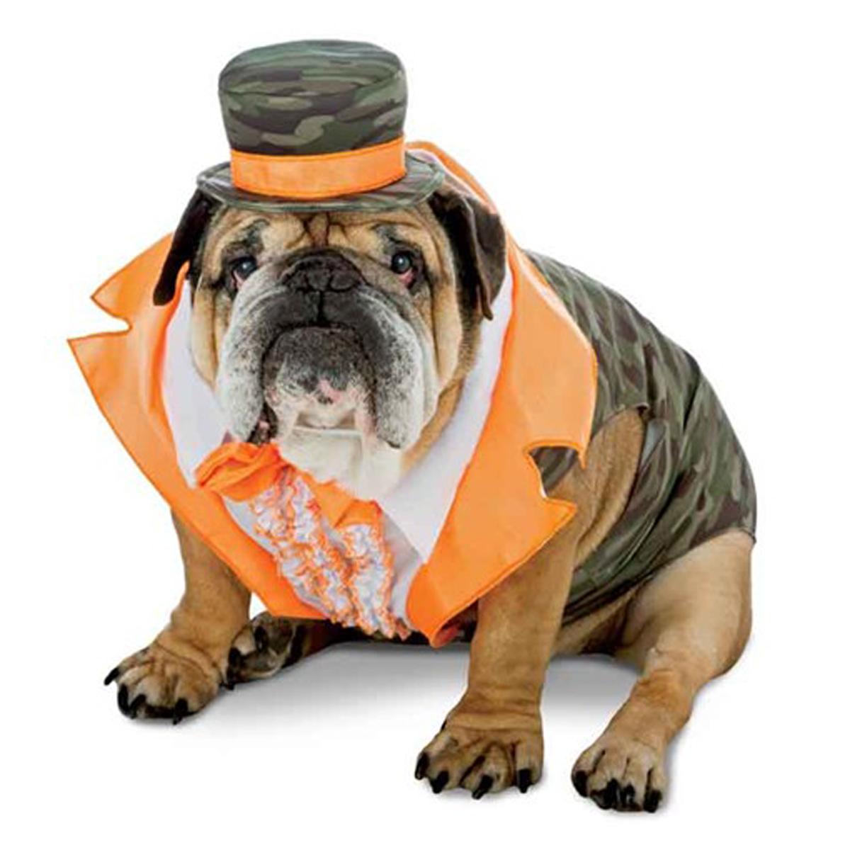 Zelda Camo Tux Dog Costume