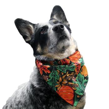 Top Performance Fall Dog Bandana starting at $3.00!