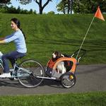 View Image 2 of 2-in-1 Guardian Gear Cross-Trainer Pet Stroller - Orange