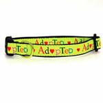 View Image 1 of Adopted Dog Collar by Up Country