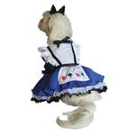 View Image 2 of Alice in Wonderland Halloween Dog Costume
