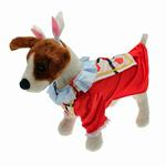 View Image 3 of Alice in Wonderland's White Rabbit Halloween Dog Costume