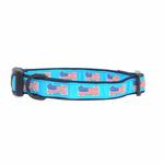 View Image 1 of All American Pup Dog Collar - Blue