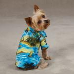View Image 1 of Aloha Camp Shirt by Casual Canine - Blue