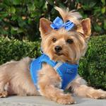 American River Ultra Choke-Free Mesh Dog Harness - Royal Blue