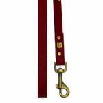 View Image 2 of Amethyst Mini Beads Leather Dog Leash - Red