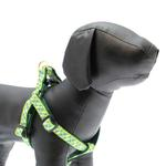 View Image 1 of Argyle Dog Harness by Up Country - Blue & Green