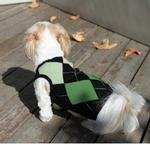 Argyle Sleeveless Dog Sweater by Gooby - Green