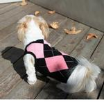 Argyle Sleeveless Dog Sweater by Gooby - Pink