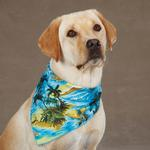 View Image 1 of Aria Aloha Dog Bandana