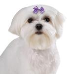 View Image 1 of Aria Gracie Dog Bows