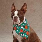 View Image 1 of Aria Sports Hound Dog Bandana -  Green