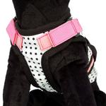 View Image 2 of Avant Garde Dog Harness - Couture Princess