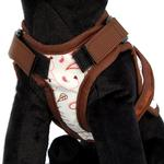 View Image 2 of Avant Garde Dog Harness - Floral Fling