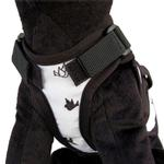 View Image 2 of Avant Garde Dog Harness - Freebird