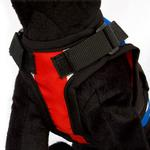 View Image 2 of Avant Garde Dog Harness - London Calling