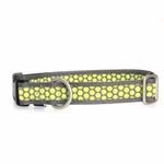 View Image 1 of Fido Finery Dog Collar - Dotted Bliss