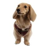 View Image 1 of Barron Dog Harness by Puppia - Wine