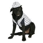 View Image 1 of Baseball Player Dog Costume