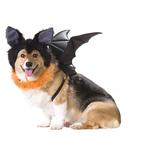 View Image 1 of Bat Halloween Dog Costume