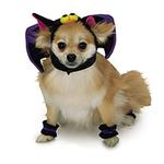 View Image 1 of Bat Hat Dog Halloween Costume Hat