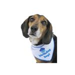 View Image 1 of Birthday Boy Dog Bandana