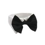 View Image 1 of Black Bowtie Collar
